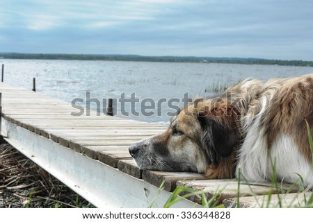 Waiting the return of the Fishing Boats - stock photo