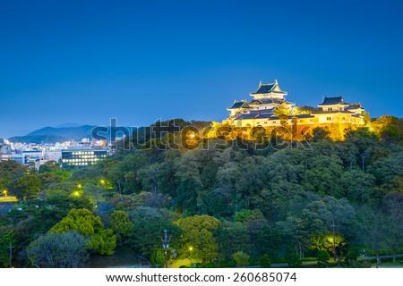Wakayama, Japan Castle and downtown cityscape. - stock photo