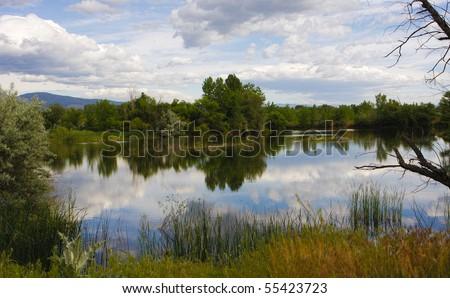 Walden Pond Reflection - stock photo