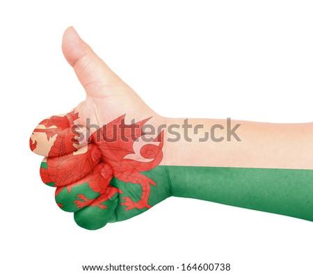 Wale flag on thumb up gesture like icon on white background - stock photo