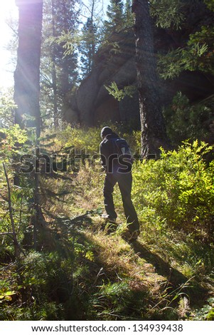 walk in the dark forest - stock photo