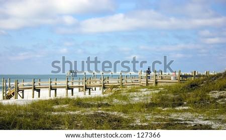 Walk into the Florida Paradise - stock photo