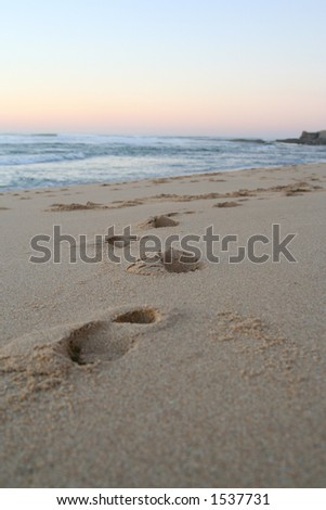 Walk on the beach - stock photo