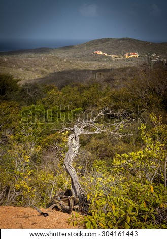 Walking above Knip - Views around Curacao Caribbean island