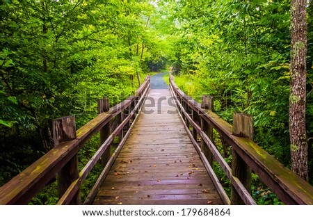 Walking bridge on the Limberlost Trail in Shenandoah National Park, Virginia. - stock photo