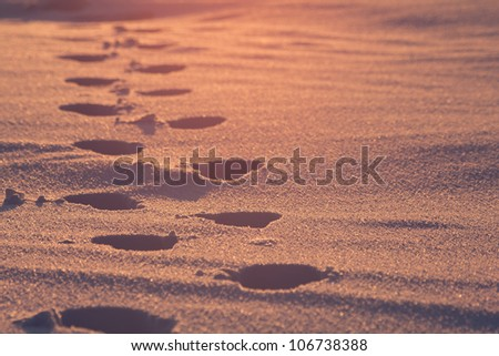 walking into the sun - stock photo