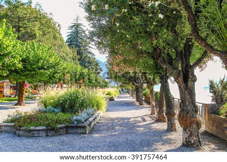 Walking path covered with trees in Bellagio, Como lake, Italy. Summer season. - stock photo