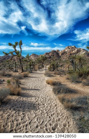 walking path in Joshua Tree National Park - stock photo