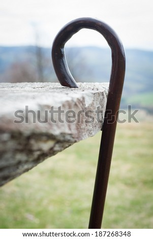 walking stick in the nature - stock photo