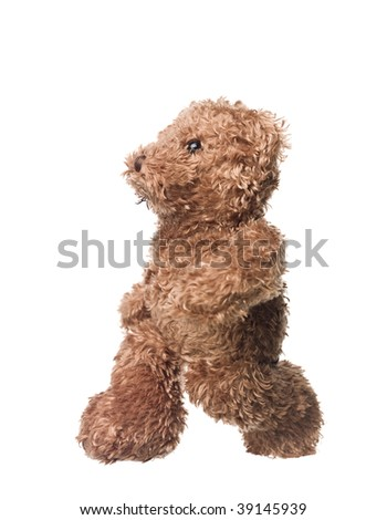 Walking teddy bear isolated on white background