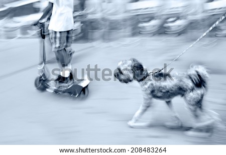 walking the dog on the street in motion blur and blue tonality - stock photo