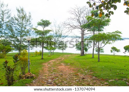 Walking trails in the park. The trees in the garden. And lawn. The lake front. - stock photo