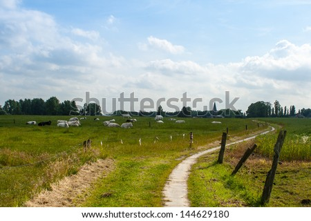 walkway for hiking on the countryside