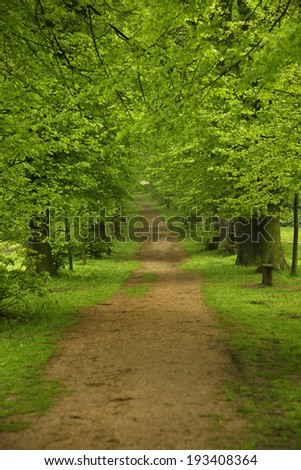 walkway in garden - stock photo