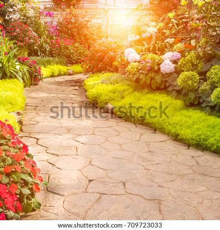 Walkway in garden with beautiful flowers at morning