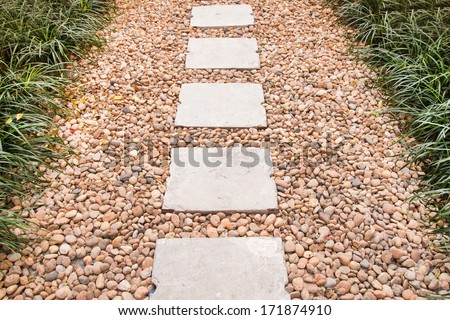 Walkway in the garden - stock photo