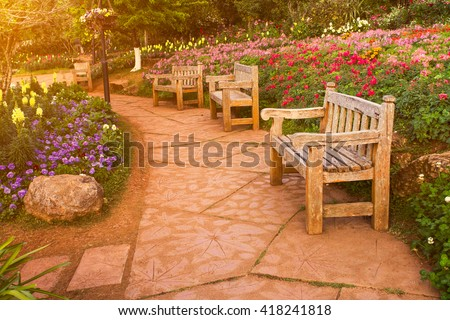 Walkway in the garden with warm morning sunshine vintage style