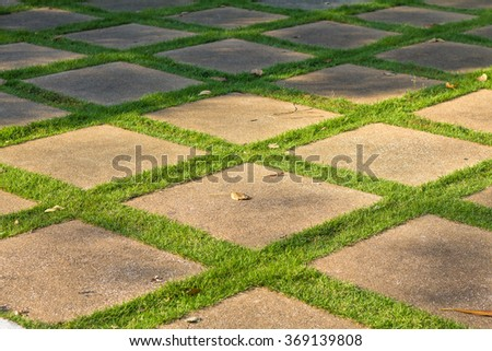 Walkway on green grass nature outdoor - stock photo
