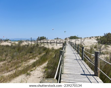Walkway on the beach. Ebro River Delta.. The Ebro Delta National Park is located at the mouth of the Ebro river in the province of Tarragona, Catalonia, Spain. - stock photo