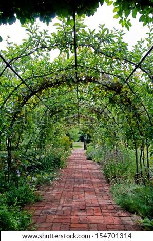 Walkway through English country garden - stock photo