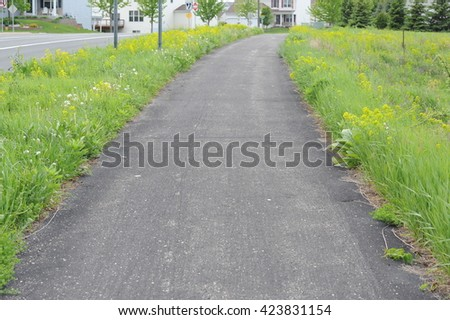 Walkway with Grass on the side