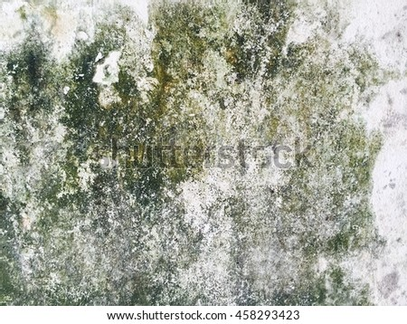 Wall background, Texture