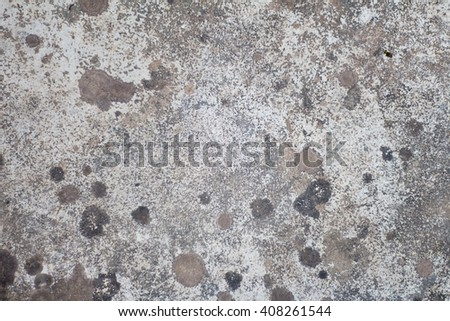 Wall cement texture backgrounds