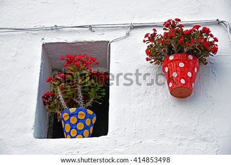 Wall is a typical Andalusian patio - stock photo