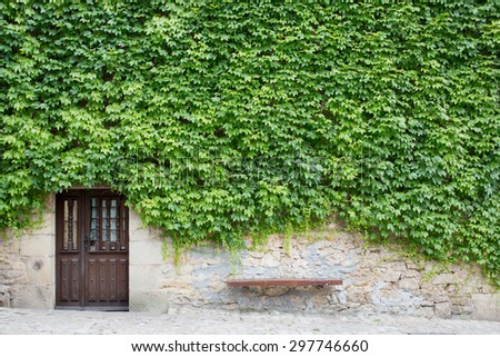 Wall of green leaves with wooden door - stock photo