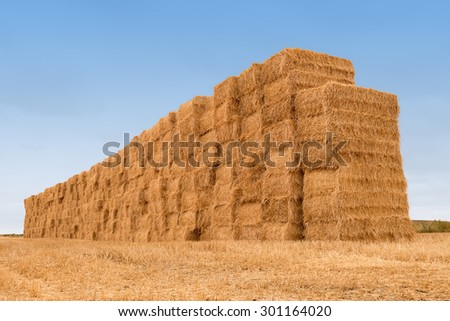 wall of many rectangular balestraw stacked after harvesting on blue sky background - stock photo