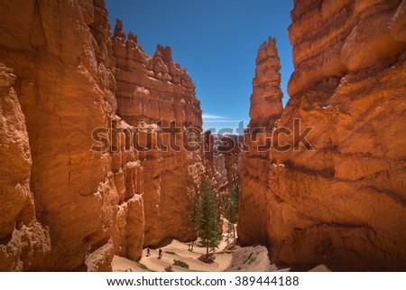 Wall Street at Navajo Loop Trail in Bryce Canyon National Park, USA  - stock photo