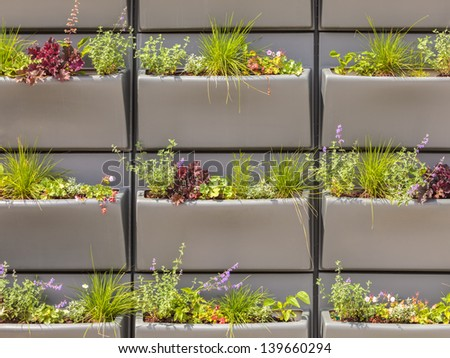 Wall with rows of plastic baskets filled with plants used for insulation of modern houses and offices - stock photo
