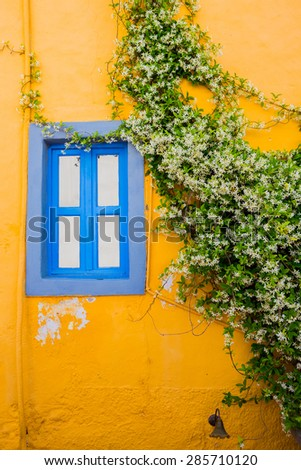 Wall with Window and climbing plant. Bright yellow mood - stock photo