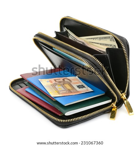 wallet with documents and money isolated on white - stock photo