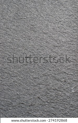 Walling panel - silver grey quartzite - stock photo
