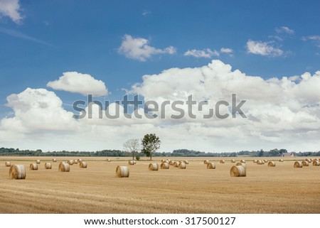 Wallpapers - an idyllic rural landscape with hay rolls and blue sky.