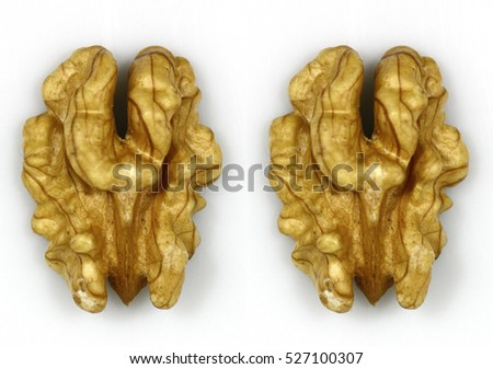 Walnut and a cracked walnut on the white background