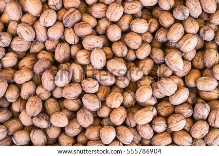 Walnut background texture