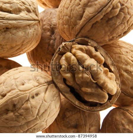 walnut closeup - stock photo