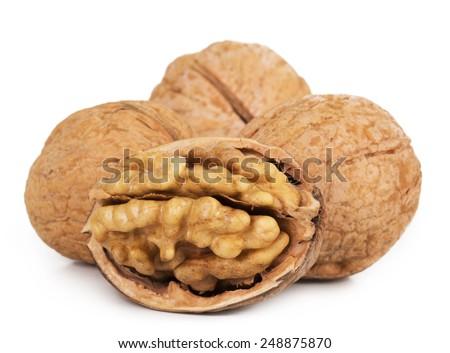 Walnut closeup isolated on white background - stock photo