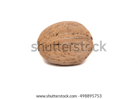 Walnut closeup isolated on white background. Natural health food.