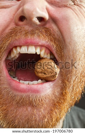 walnut in teeth with red beard around the open lips closeup stock photo. Black Bedroom Furniture Sets. Home Design Ideas