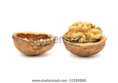 walnut isolated on a white