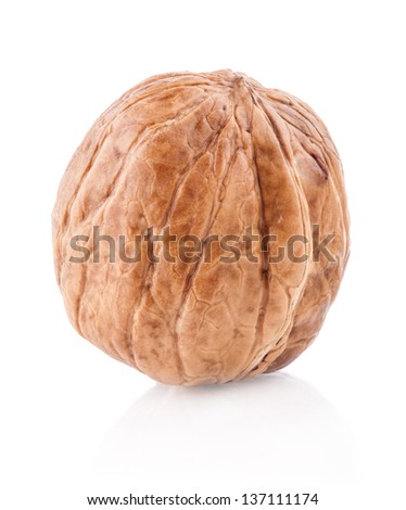 Walnut isolated on the white background, closeup - stock photo