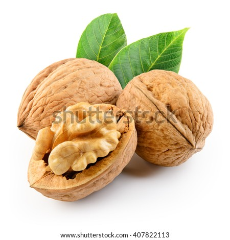 Walnut isolated on the white background. With clipping path.