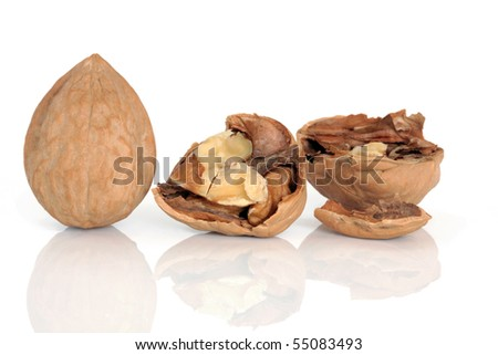 Walnut kernels whole and cracked open with shells, isolated over white background.