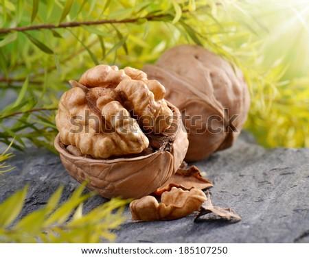 walnuts  - stock photo