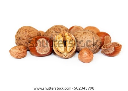 Walnuts and hazelnuts on white background. Nuts on white background