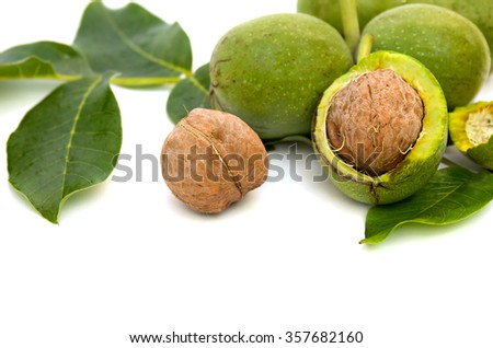 Walnuts(Juglans regia) with green leaves on white background - stock photo
