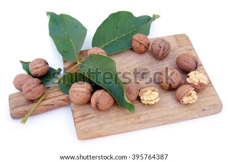 Walnuts on green leaves and wooden board - isolated on white